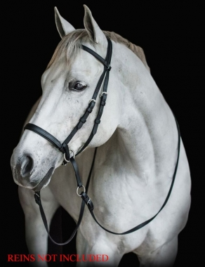 Beta Bitless Bridle By Dr  Cook