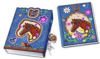 Diary lock box