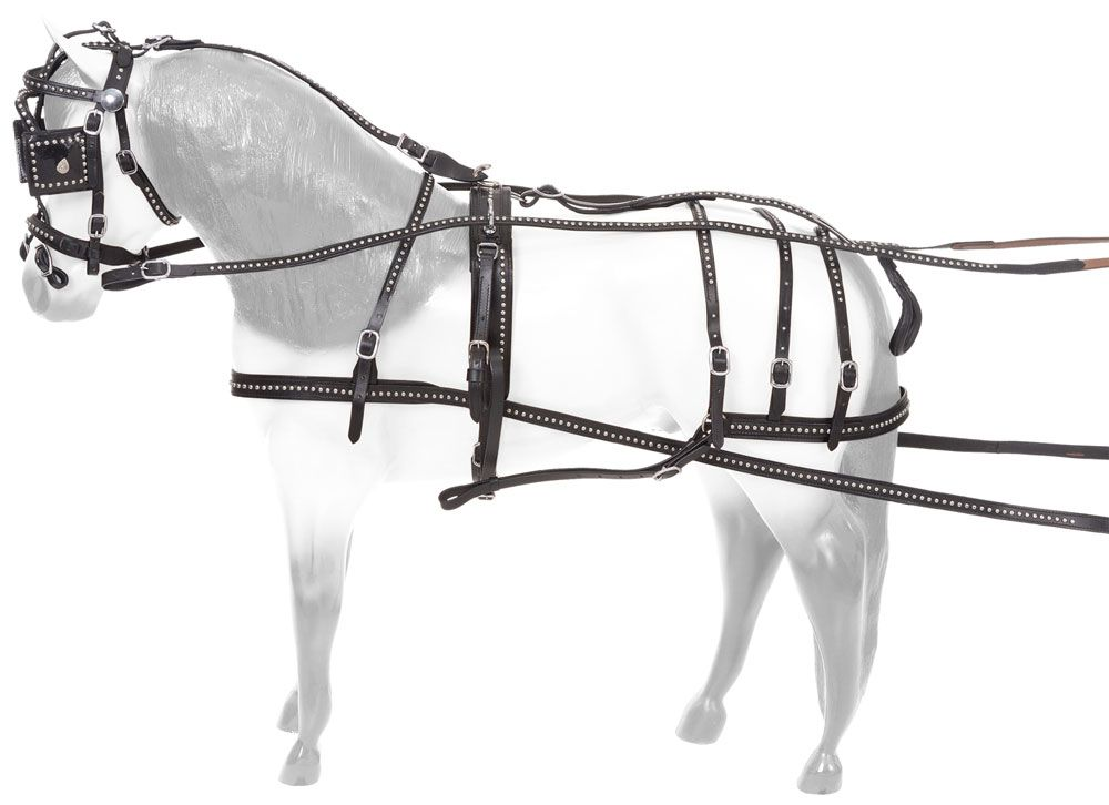 JT7917 driving harness chicks discount saddlery