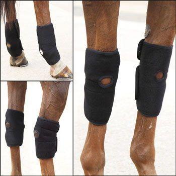 Saddles Tack Horse Supplies Chicksaddlery Com Shires Hot