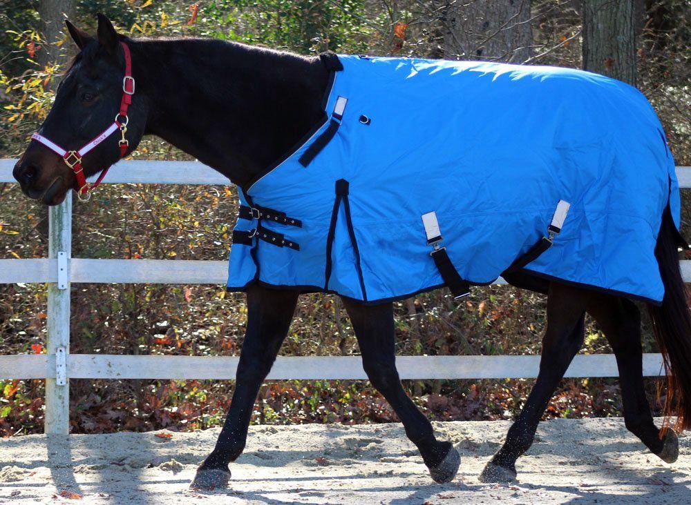 "TEAL Pony Yearling Horse 1200D Waterproof Winter Turnout Blanket 48 50 52 54/"""
