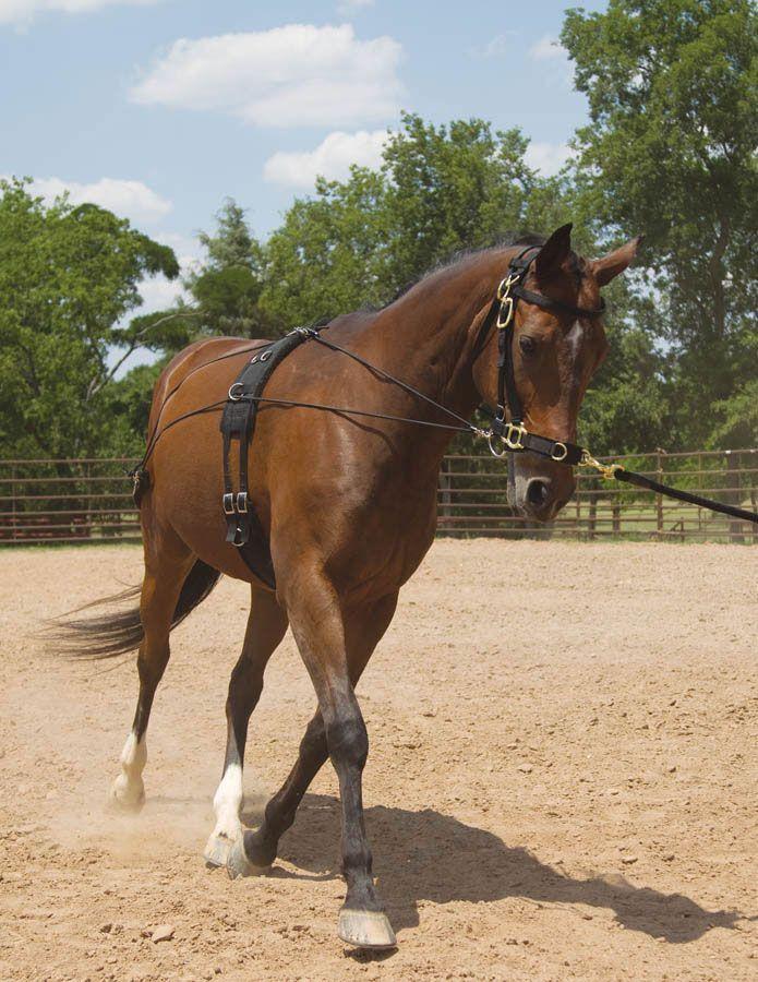 Saddles Tack Horse Supplies